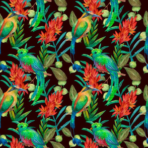Colorful floral pattern with exotic birds on dark