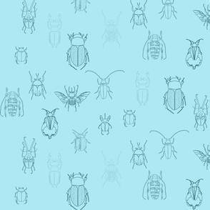 beetles in blue