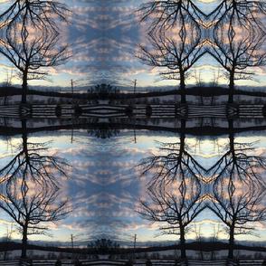 Bearcreek snowy sunrise