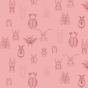 beetles in pink