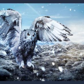 owl in winter - potter's world