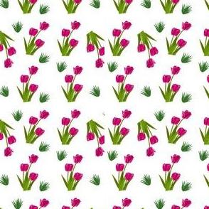 Sweet & Sensual   Floral