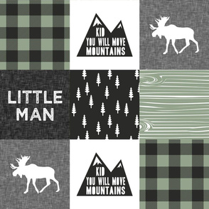 Little Man & You Will Move Mountains Quilt Top - sage