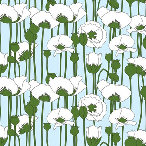 poppies in white on light blue