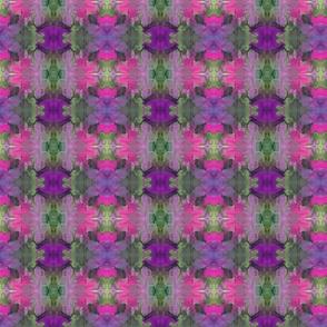 purple and fushia flowers