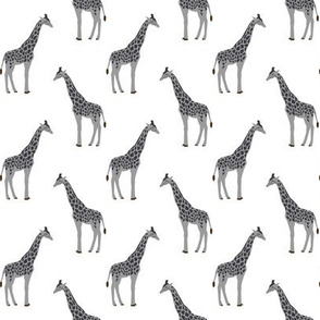 safari quilt coordinate animals giraffe grey and white nursery fabric