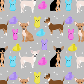 chihuahua easter spring marshmallow treats dog breed pet fabric grey