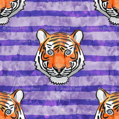 tiger face - purple stripes