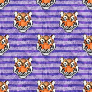 tiger face - purple stripes