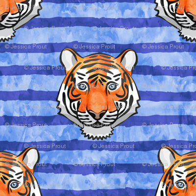 tiger on blue stripes