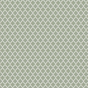 quatrefoil sage green - small