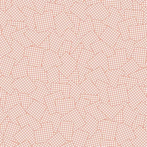 Sudoku Grid Mashup - Melon on Cantaloupe Cream