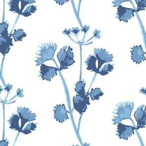 Blue Herb Cilantro
