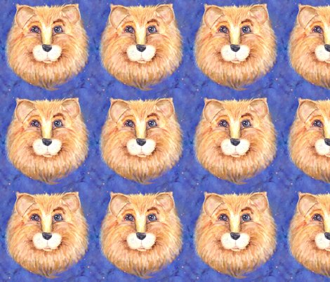 Rthe-blue-eyed-cute-feline-lion-cat-starry-sky-by-paysmage_shop_preview
