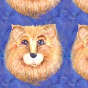 Rthe-blue-eyed-cute-feline-lion-cat-starry-sky-by-paysmage_shop_thumb