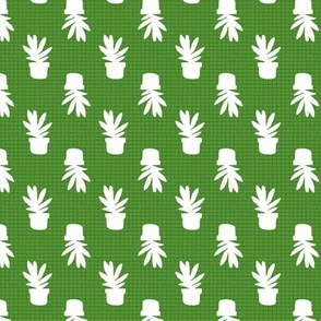 Green Grid Cactus blender repeat