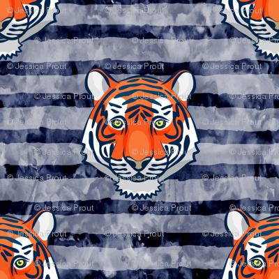 tiger - navy stripes