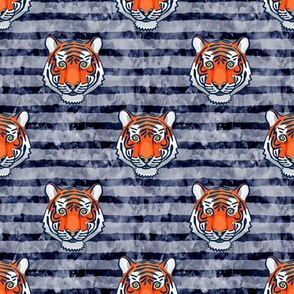 tiger - navy stripes