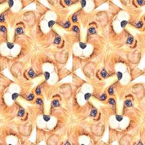 THE BLUE EYED CUTE FELINE LION CAT SWIRL orange beige ecru