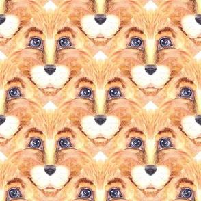 THE BLUE EYED CUTE FELINE LION CAT TRIANGLES  lozenges beige ecru orange
