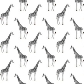 safari coordinates quilt grey and white giraffe  animals nursery