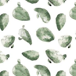 Cacti_Sage_1