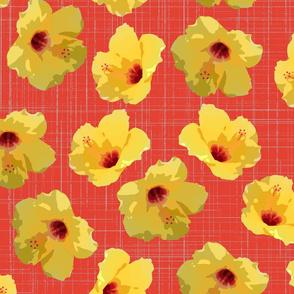 hibiscus spring yellow tomato