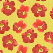 hibiscus spring tomato yellow