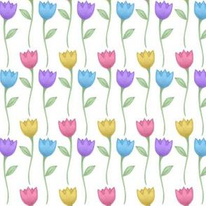 tulip white