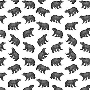 Antique Bears in Black and White