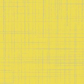 Meadowlark crosshatch
