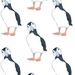 puffins// puffin fabric, puffin design hand drawn, puffin art,