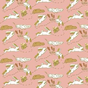 Rabbit Race White Rabbits on Pink