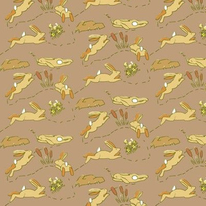Rabbit Race Sandy Rabbits on Brown