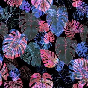 kona tropic nocturnal