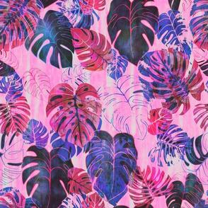 kona tropic pink
