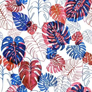 kona tropic redblue