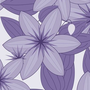 Clematis Scatter: Violet Purple