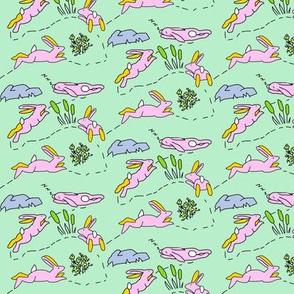 Rabbit Race Pastel