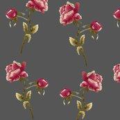 Roses-cf4_shop_thumb