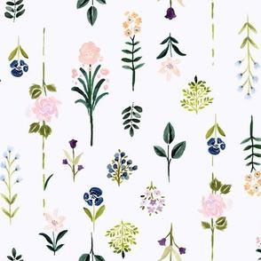 Flower Specimen-vintage02