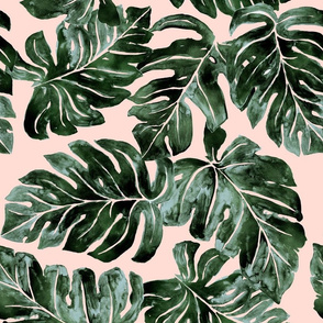 Jungle Monstera Leaves blush