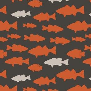 fish ||C1