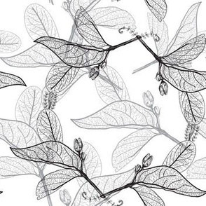 Leaves contours on a white. floral  hand-drawn pattern