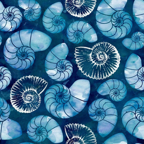 Nautilus fossils in sapphire blue