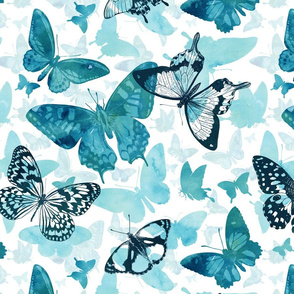 Butterfly glow in turquoise blue