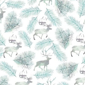 Northern pattern