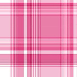 In the Pink Plaid