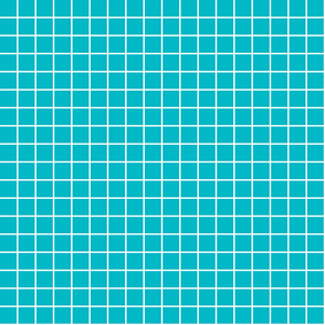 "surfer blue windowpane grid 1"" reversed square check graph paper"