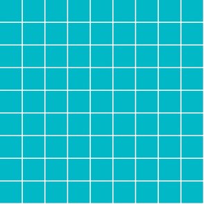 "surfer blue windowpane grid 2"" reversed square check graph paper"